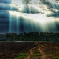 ...земная дорога в небеса :: Тарасенко Владимир