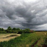 Дождливый июнь :: Сергей Михайлович