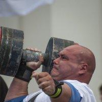 Богатыри России :: Василий Либко