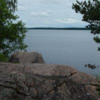 Вид на озеро парка Монрепо :: Валентина Папилова