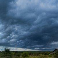 кажется дождь начинается :: Alexsei Melnikov