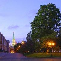 Вечером в Кремле :: Евгений Кривошеев