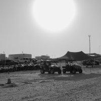 Утренее солнце в Катаре :: Татьяна Жуковская