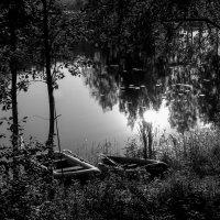 Вечером у озера... :: Любовь Гайшина