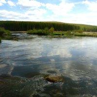 В реку смотрятся облака... :: Лариса Рогова
