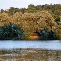 Озеро в Тульчине :: Raisa Ivanova