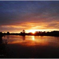 На закате дня.. :: Антонина Гугаева