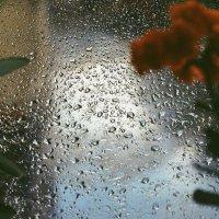Летний дождь :: Дарья Карпова