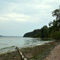 Каунасское Море I :: Kliwo