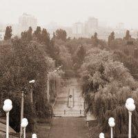 ...в городе дождь... :: Ольга Нарышкова