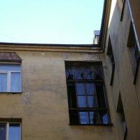Петербургские окна :: Марина Домосилецкая