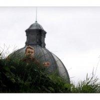 по траве :: sv.kaschuk