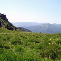 отдых с видом на  Гранд Бальон :: Olga
