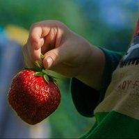 Серия - Клубничка.  «Мама это яблоко или груша?» :: Поток