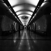 Dark Side :: Алексей Егоров