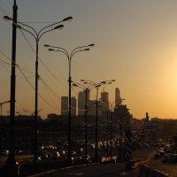 Вид на Крымский мост и Сити :: Нелли *