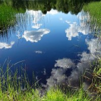 Утро, солнце...хорошо... :: Владимир Гилясев