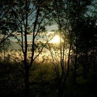 Рассвет во Владимире 5 утра :: Олег Романенко