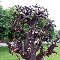 Свадебное дерево :: Виктор Орлов