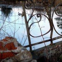 малиновый прутик :: sv.kaschuk