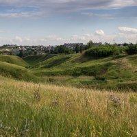 Летний пейзаж :: Alexander Shmygin