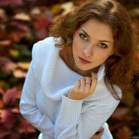 Теплая осень :: Антон Виолин