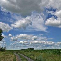 По дороге с облаками :: Татьяна Кретова