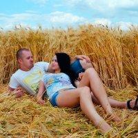 Пшеница :: Алла Болдырева