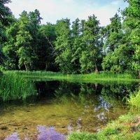 Вода в реке.. :: Юрий Стародубцев