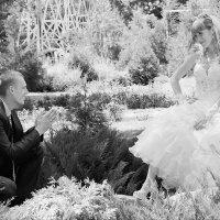 Свадебная фотосъемка Наташи и Андрея :: Евгений Носаль