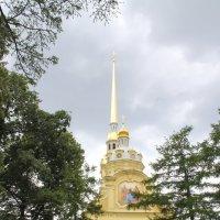 Петропавловский собор и великокняжеская усыпальница. :: Александр