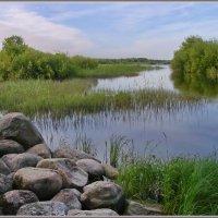 Утром у реки :: lady v.ekaterina