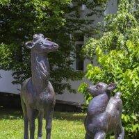 Олениха с олененком :: Николай Николенко