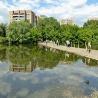 В парк! :: Евгений Алябьев