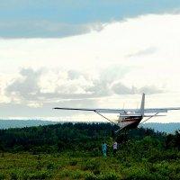 Влюбленные самолеты не наблюдают... :: Александр Кокоулин
