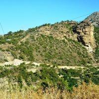 Природа Крита :: Максим Башлак
