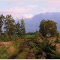 Осенняя распутица :: Natali8163 *