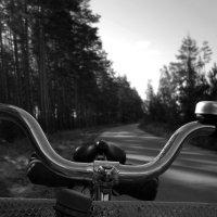 Путь домой :: Павел Зюзин