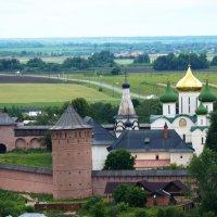 Суздаль...Спасо-Евфимиевский мужской монастырь :: Galina Leskova