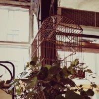 Кафе-булочная ... около выхода :) :: Natali