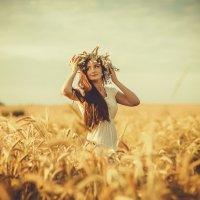 В поле... :: Янина Гришкова