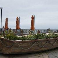 Владивосток. У нас даже клумбы морские. :: Нина Борисова