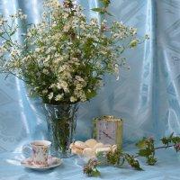 Цветы полевые :: Наталия Лыкова