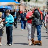 Посреди улицы, средь бела дня! :: Александр Степовой