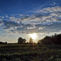 Красота солнечный лучей :: Tatiana Kretova