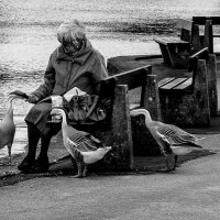 одиночество :: Андрей Данилов