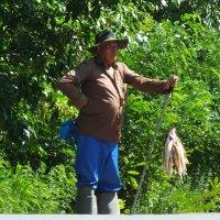 Придорожная рыботорговля :: Константин Снежин