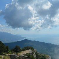 Дотянись до облака :: Александр С.