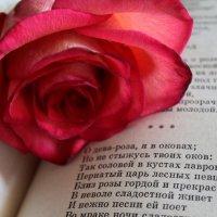 Александр Сергеевич :: Таня Фиалка