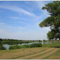 Летний сельский пейзаж... :: Тамара (st.tamara)